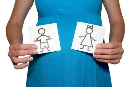 Беременность как определить пол ребенка фото