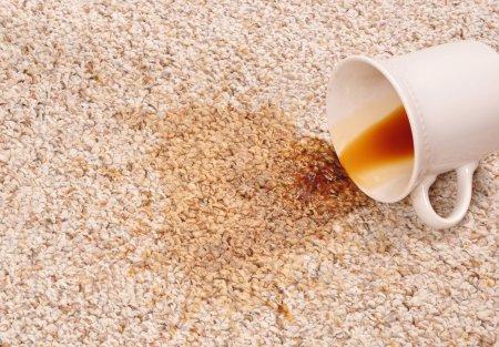Пятно от кофе на ковролине фото