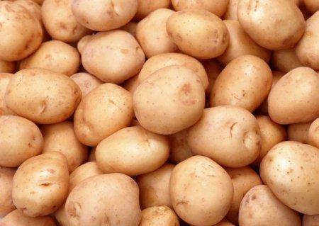 Картошка приснилась фото