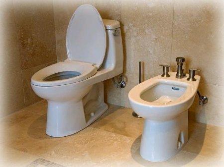 Приснился туале фото