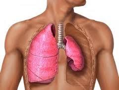 Эмфизема легких – фото