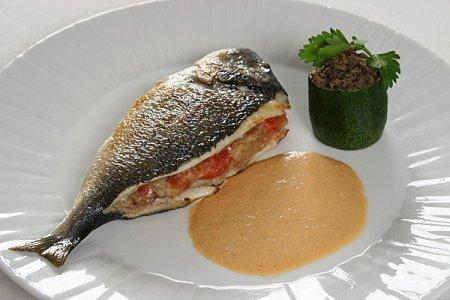 Сибас рыба – фото
