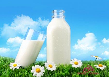 коровье молоко в стакане и бутылке